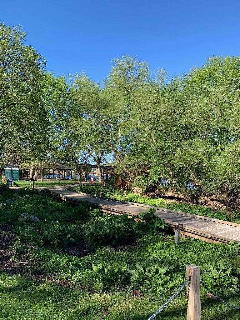 Parks in Ann Arbor: Argo Park and Canoe Livery