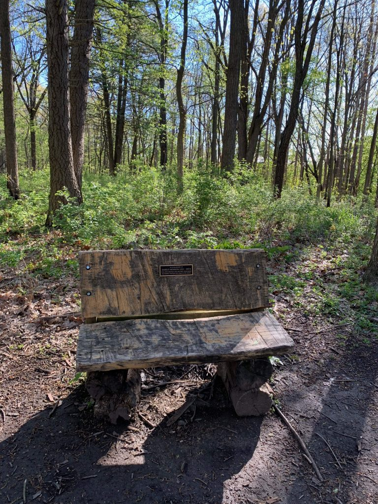 Parks in Ann Arbor: A great resting spot in beautiful Bird Hills Nature Area